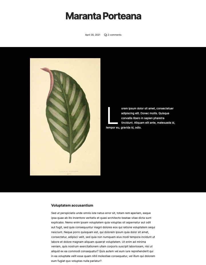 Full width cover with black background